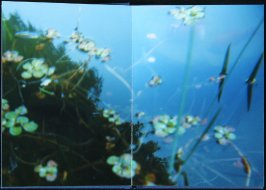 Untitled, first double page image in the book Interstice (San Francisco, 2004)