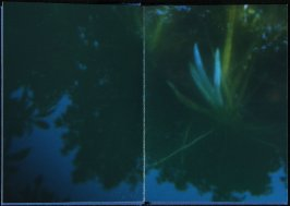 Untitled, second double page image in the book Interstice (San Francisco, 2004)