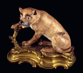 Seated Lioness