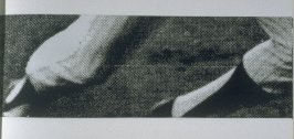 Untitled (enlarged detail of legs),pl. 3 from the book A Scratch on the Negative (Oakland: Crown Point Press, 1974)