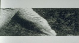 Untitled (enlarged detail of upper legs),pl. 6 from the book A Scratch on the Negative (Oakland: Crown Point Press, 1974)