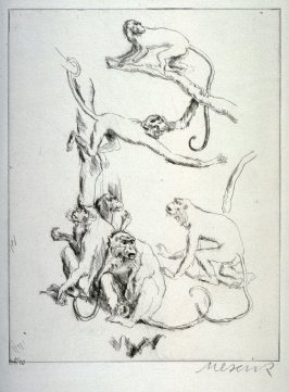 One of 12 Etchings of Animals: [Monkey]