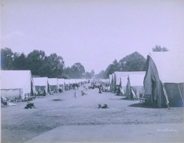 Tents in Park (San Francisco earthquake series no. 30)