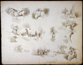 Sketches of - horses, sheep, donkey head, cart, etc.