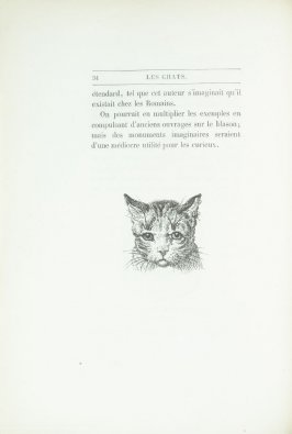 """Tête de chat, d'après un maître anglais anonyme"", pg. 34, in the book Les Chats (Cats) by Champfleury (Paris: J. Rothschild, 1870)."