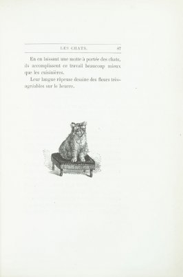 """Croquis de chat d'aprés nature"", end device pg. 87, in the book Les Chats (Cats) by Champfleury (Paris: J. Rothschild, 1870)."