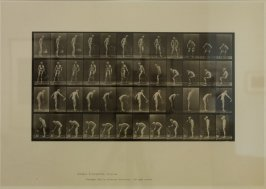 Plate 490 from Animal Locomotion, New Volume 3