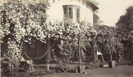 Untitled nineteenth image from the Heartsease, Menlo Park section of the album Home (605 O'Farrell Street, San Francisco and Heartsease, Menlo Park)