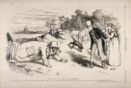 The Wolf in Sheep's Clothing  - from Harper's Weekly (September 14, 1872), p. 716