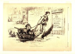 Dog Days, from Harper's Weekly, (July 11, 1874), p. 580