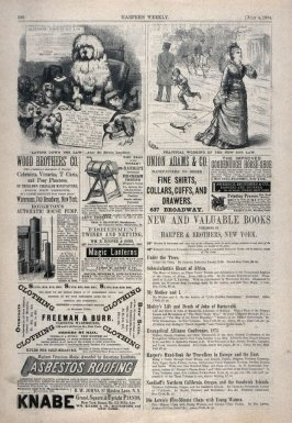 Laying Down the Law and Practical Working of the new dog law, from Harper's Weekly, (July 4, 1874), p. 568