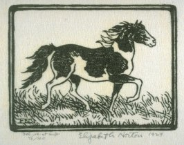 Pony in a Hurry