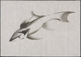 Untitled (Shark Study)