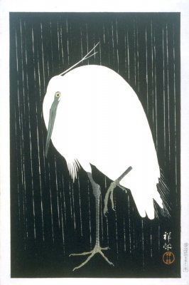 Standing Heron in the Rain