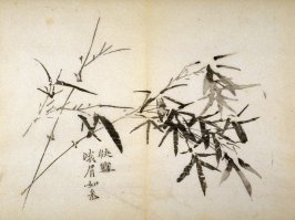 """Rejoicing in Snow""- No.7 from the Volume on Bamboo - from: The Treatise on Calligraphy and Painting of the Ten Bamboo Studio"