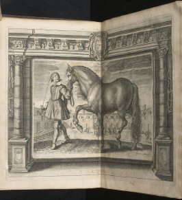 Illustration 7 in the book l'Instruction du Roy en l'exercice de monter à cheval (Paris: Michel Nivelle, 1625)