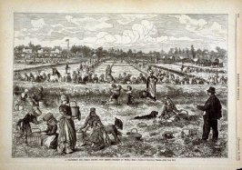 A Cranberry Bog, Ocean County, New Jersey - Pickers at Work - p.880, Harper's Weekly (10 November 1877)