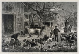 An American Farm-Yard - A Frosty Morning - p.8 from Harper's Weekly (6 January 1877)