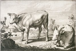 A Standing and a Lying Bullcalf, no. 2 from Diversa Animalia Quadrupedia