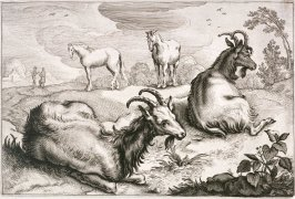 Two Goats Resting in Foreground, Two Horses in Background, no. 8 from Diversa Animalia Quadrupedia