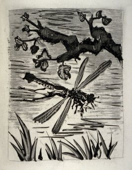La libellule (The dragonfly), pl. 27, from the book Picasso/Eaux-fortes originales pour des textes de Buffon (Picasso/Original Etchings for the Texts by Buffon) (Paris: Martin Fabiani, 1942)
