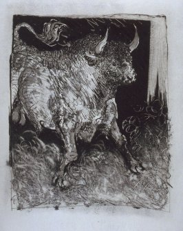 """Le taureau (The Bull),"" in the book Histoire naturelle: Picasso eaux-fortes originales pour les textes de Buffon (Picasso's Original Etchings for Buffon's Text) (Paris: Martin Fabiani, 1942)"