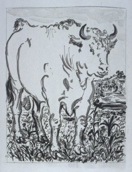 """Le bœuf (The Ox),"" in the book Histoire naturelle: Picasso eaux-fortes originales pour les textes de Buffon (Picasso's Original Etchings for Buffon's Text) (Paris: Martin Fabiani, 1942)"