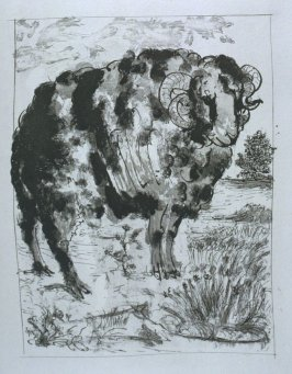 """Le bélier (The Ram),"" in the book Histoire naturelle: Picasso eaux-fortes originales pour les textes de Buffon (Picasso's Original Etchings for Buffon's Text) (Paris: Martin Fabiani, 1942)"