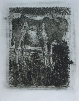 """L'âne (The Donkey),"" in the book Histoire naturelle: Picasso eaux-fortes originales pour les textes de Buffon (Picasso's Original Etchings for Buffon's Text) (Paris: Martin Fabiani, 1942)"