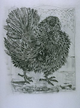 """Le dindon (TheTurkey),"" in Picasso eaux-fortes originales pour les textes de Buffon (Picasso's Original Etchings for Buffon's Text) (Paris: Martin Fabiani, 1942)"