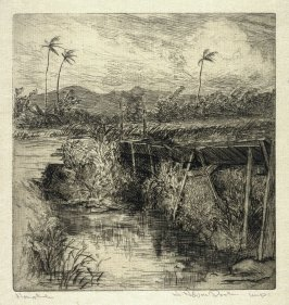 The Flume from the Honolulu Series
