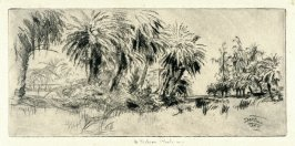 Date Palms, Kapiolani Park from the Honolulu Series