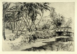 The Bridge from the Honolulu series