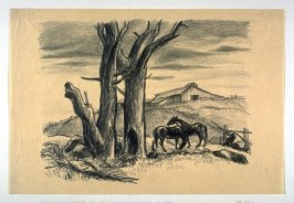 Barren Trees, Two Foals, and a Barn