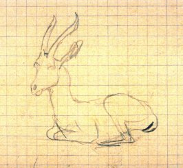 Untitled (Sketch of a Goat)