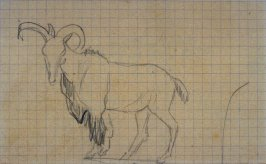 Untitled (Sketch of a Standing Goat)