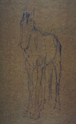 Sketch of a horse (3/4 front)