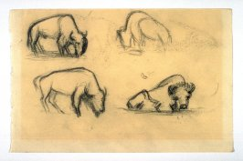 4 sketches of Buffalo