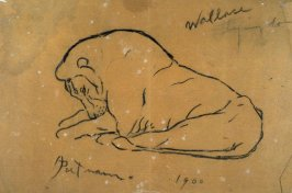 Sketch of a reclining female animal