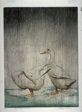 Fine Weather for Ducks