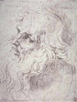 Head of an Old Man in Three-Quarter View