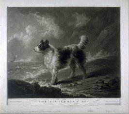 The Fisherman's Dog