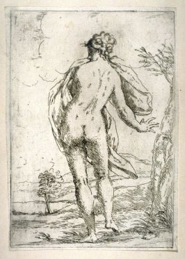 Nude female with back view and head turned sideways