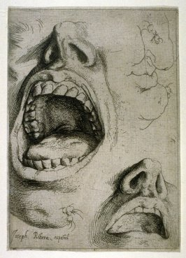 Studies of Nose and Mouth (right half of plate)