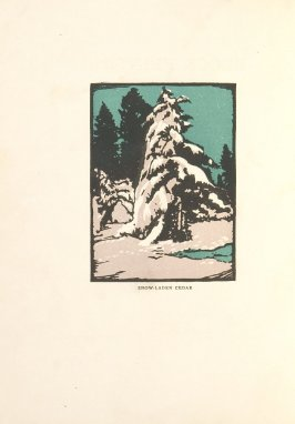 Snow-laden Cedar, Illustration 1 in the book Block Printing in the School by William Seltzer Rice