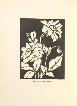 Dahlias, Illustration 14 in the book Block Printing in the School by William Seltzer Rice