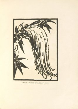 Bird of Paradise, Illustration 17 in the book Block Printing in the School by William Seltzer Rice