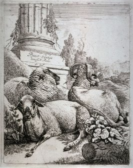 The Sheep at the Column
