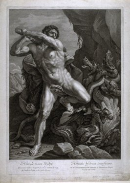 Hercules Killing the Hydra