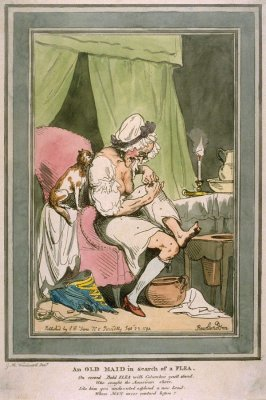 An Old Maid in Search of a Flea